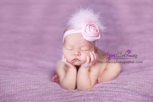 Modern Beautiful Dallas Newborn / Baby Photographer in Frisco TX